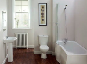 bathroom ideas for a basement