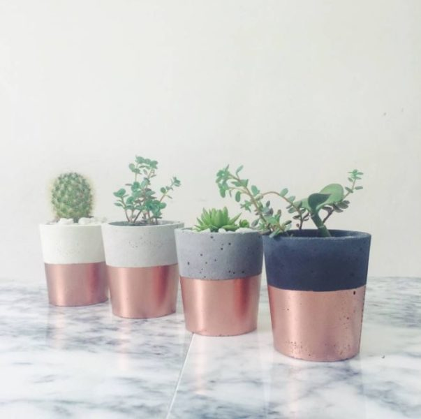 8 plant stand