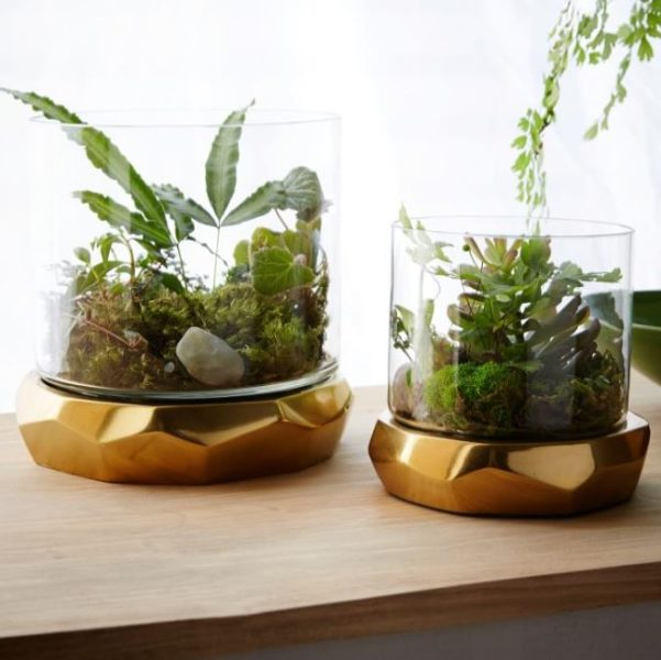 plant stands pedestal