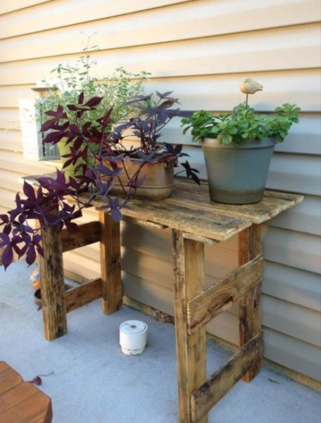 plant stand steps